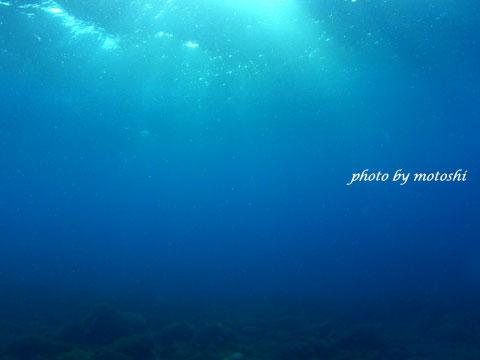 mo-blue.jpg
